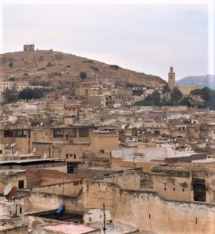 Fes and Fava: A Great Moroccan Experience