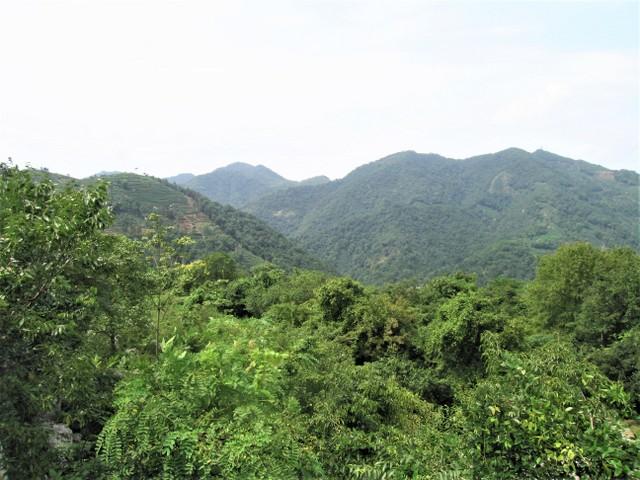 Longjing mountains